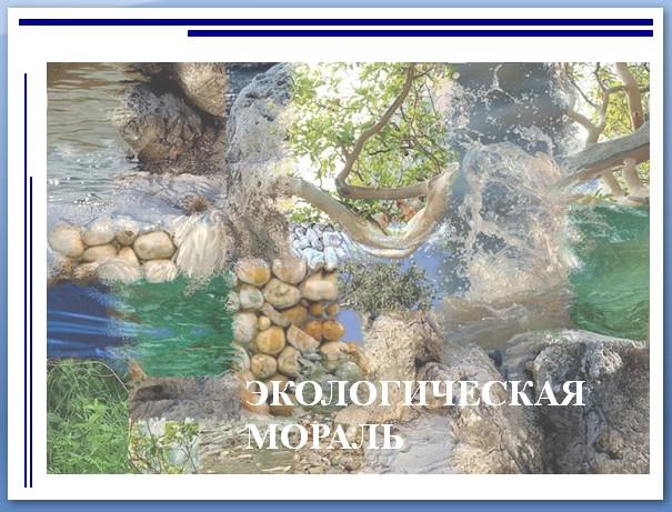 Слайд из презентации Экологическая мораль