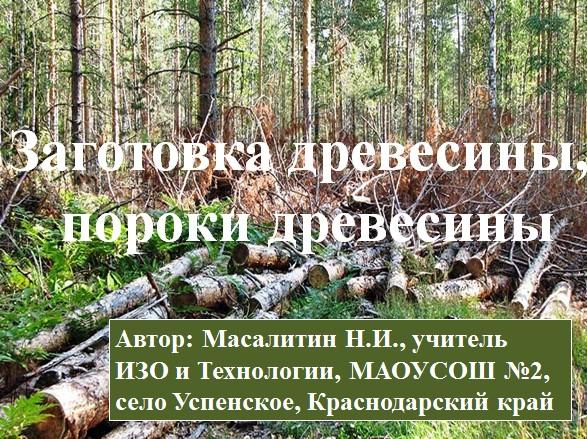 первый слайд в презентации Заготовка древесины. Пороки древесины