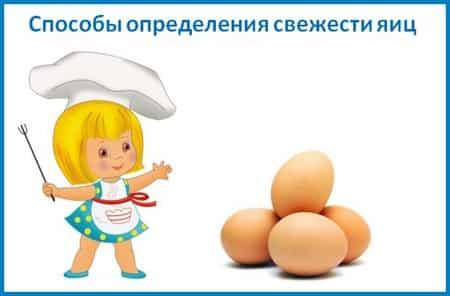 Определение свежести яиц-min