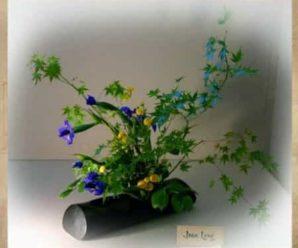 Цветовое богатство икебаны