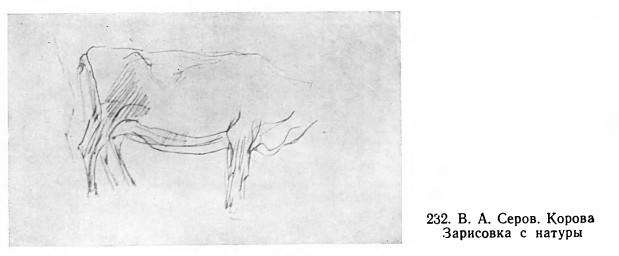 Корова. Зарисовка